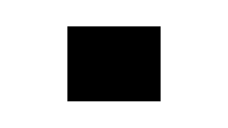 logo_bub